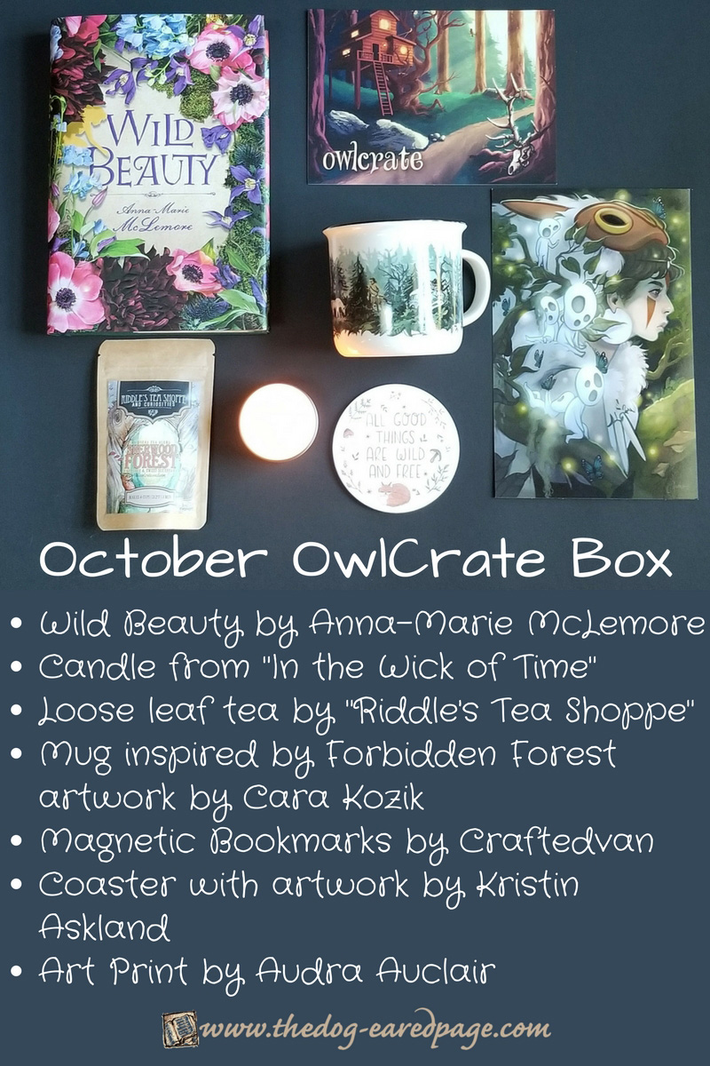 October OwlCrate Box